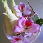 Lai Châu níu chân du khách bằng món măng nộm hoa ban