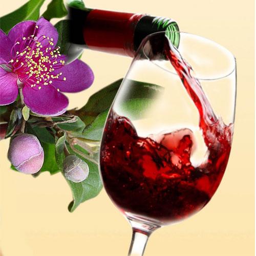 Rượu sim Phú Quốc