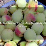 Khó lòng làm ngơ trước những đặc sản bậc nhất xứ Lạng